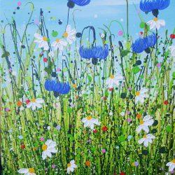 Cornflower & Daisy Meadows