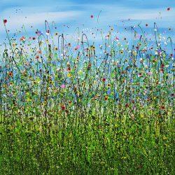 Morning Poppy Meadows #6
