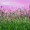 Wild Blush Meadows