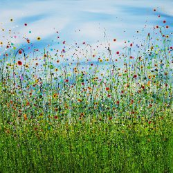 Morning Poppy Meadows #7